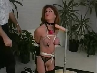 Hardcore But Sadistic Action In Free Bdsm Videos